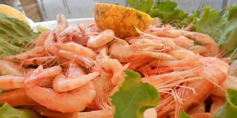 5 locali di pozzuoli dove mangiare pesce a buon prezzo - Dove acquistare mobili a buon prezzo ...
