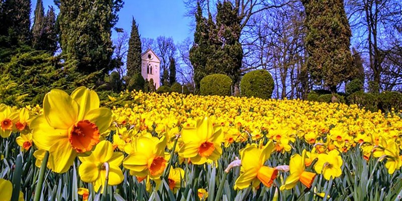 Feste, sagre eventi a Verona e provincia nel mese di Marzo