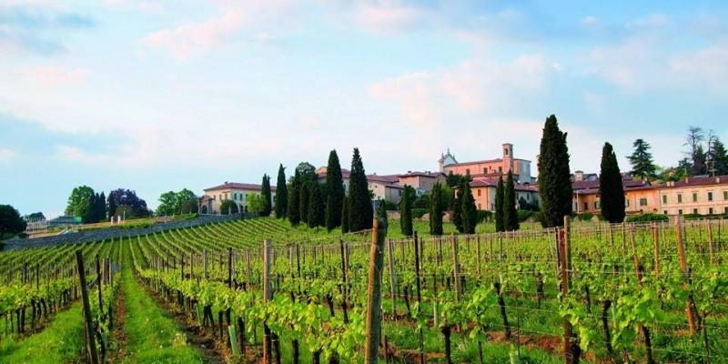 Le strade del vino e dei sapori in Lombardia