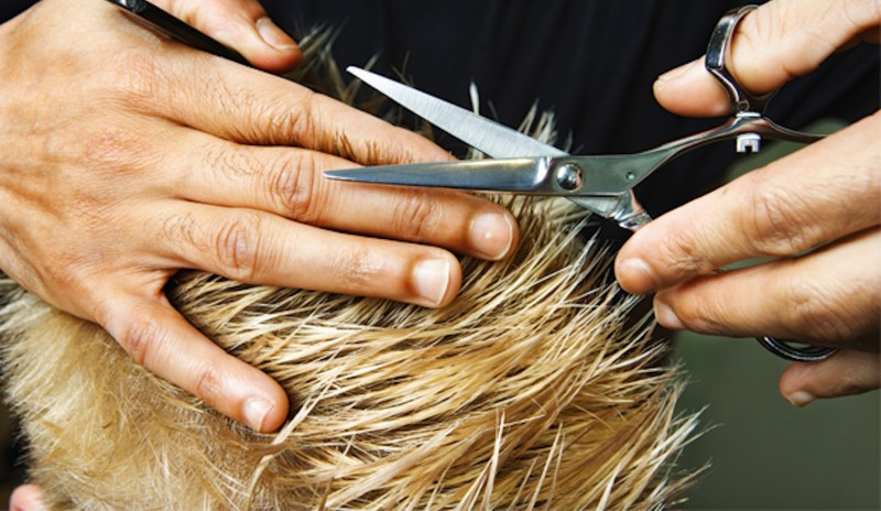 redattori licheri il parrucchiere