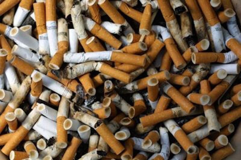 redattori licheri il fumatore