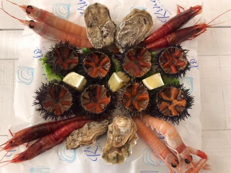 krudo bisceglie aperitivo frutti di mare puglia