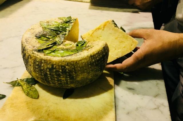 taverna cestia intervista team valerio salvi cucina romana testaccio amatriciana carbonara pecorino amatrice vino naturale cucina tradizionale