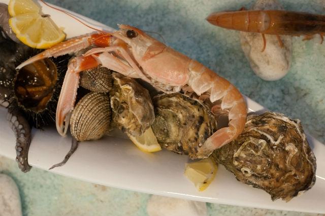 ristorante pesce crudo frutti di mare trani foto di trani70 in gallery