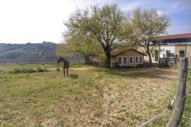 la tenuta resort agricolo