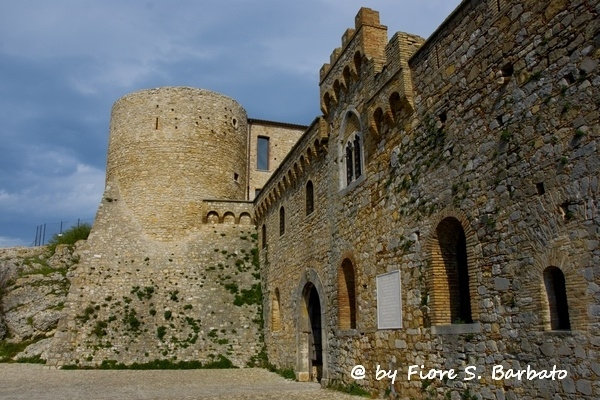 bovino https://www.flickr.com/photos/fiore_barbato/13434143213/