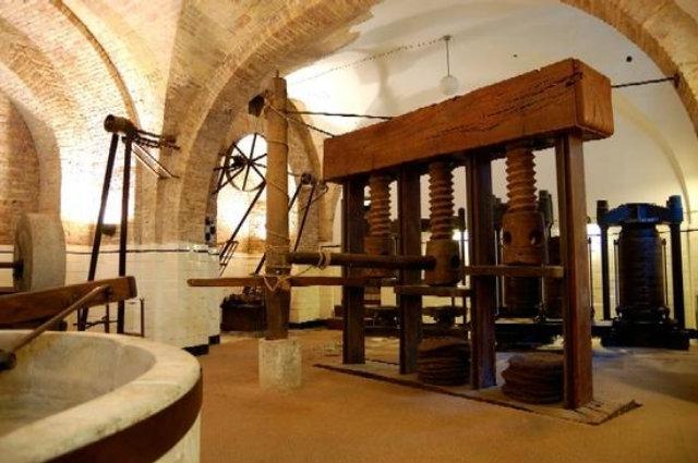 museo dellolio loreto aprutino