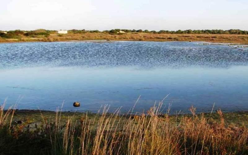 redattori licheri lago acquatina frigole