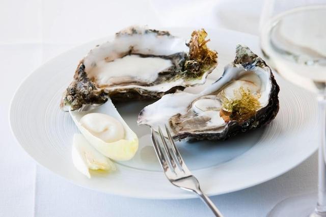 oyster bar ostriche milano