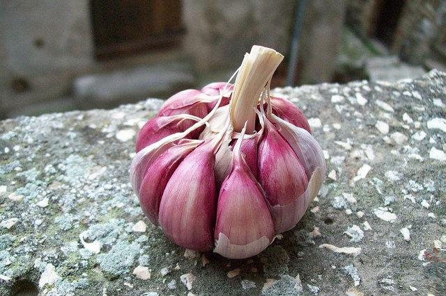 Se mangi questi 5 colori del salento avrai una salute di ferro for Piantare aglio