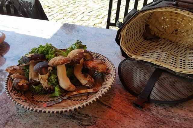 agriturismo la sorgente nepi tuscia via francigena migliori agriturismi del lazio funghi porcini casale fine settimana week end campagna relax escursioni cucina