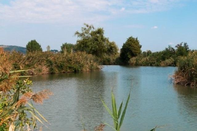 lago lispida