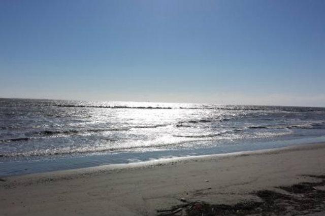 spiagge selvagge veneto