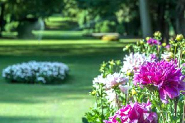 i più bei parchi e giardini del veneto